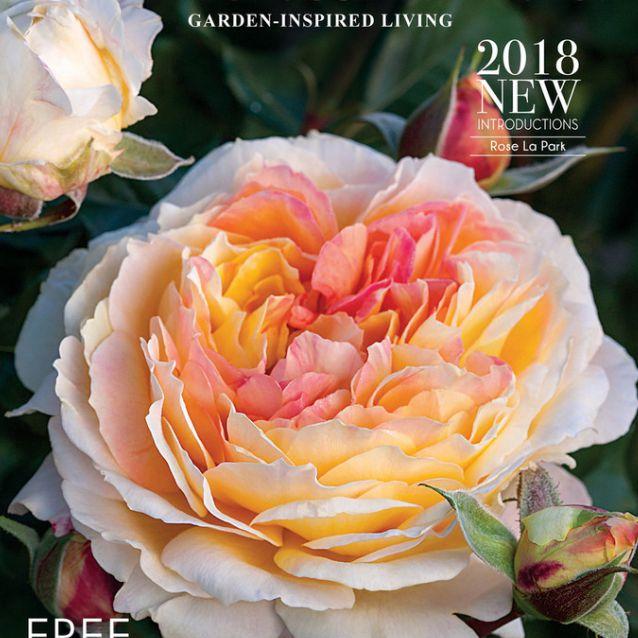 El catálogo de semillas de Jackson & Perkins 2018