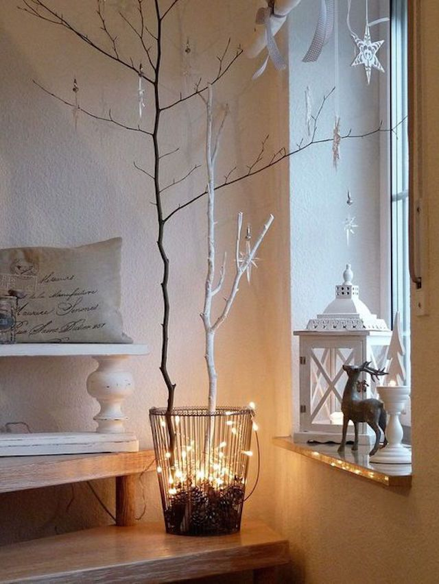 White lights and branches
