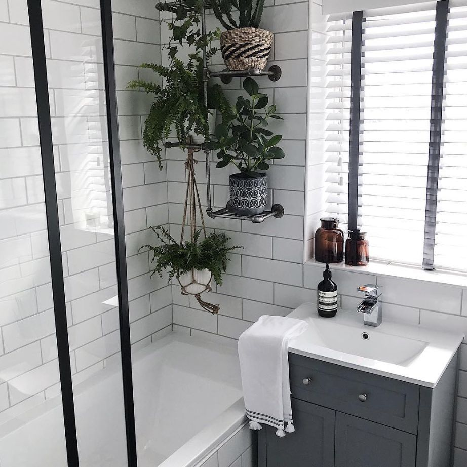 Bathroom with shower full of plants