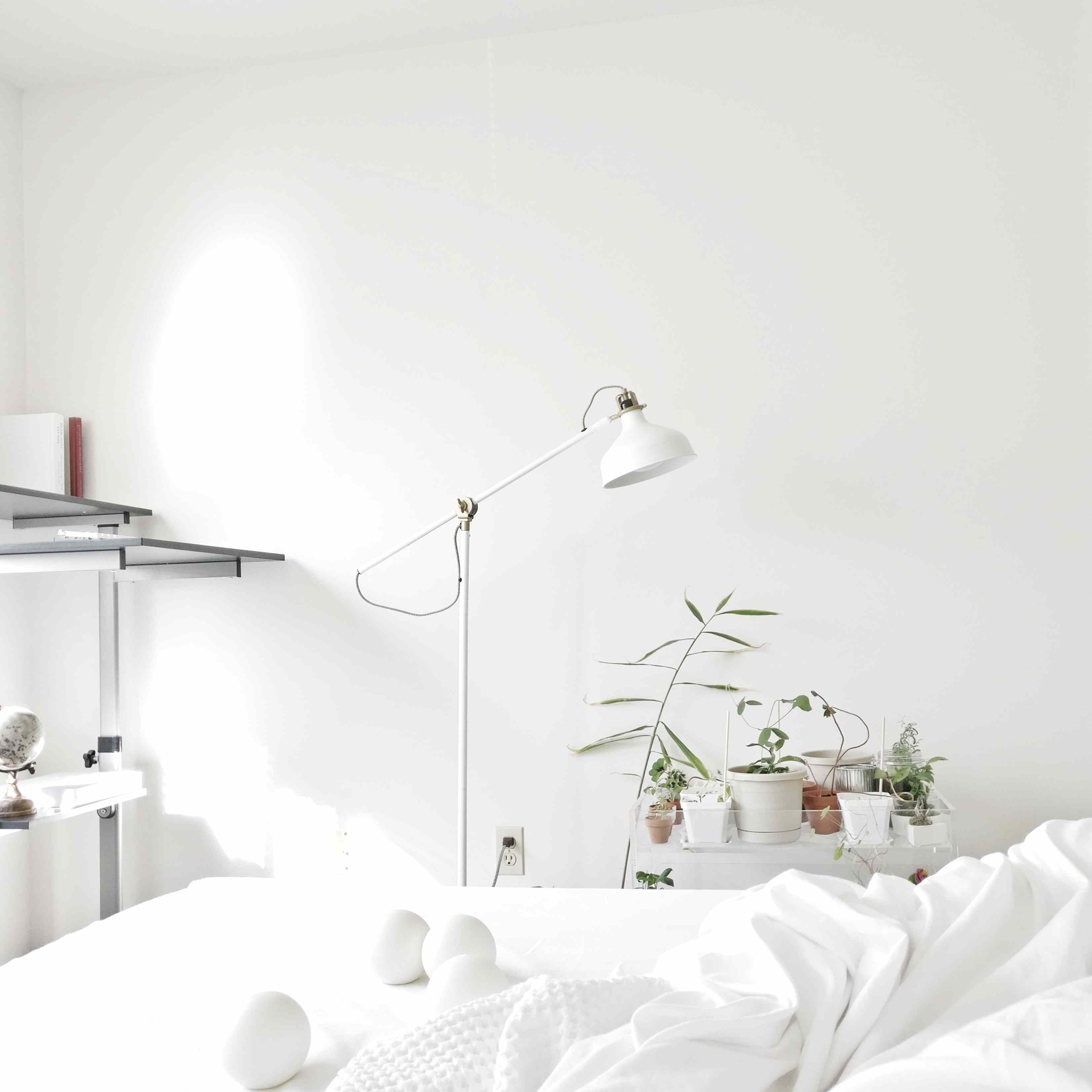 white bedroom with plants, lamp and white linens