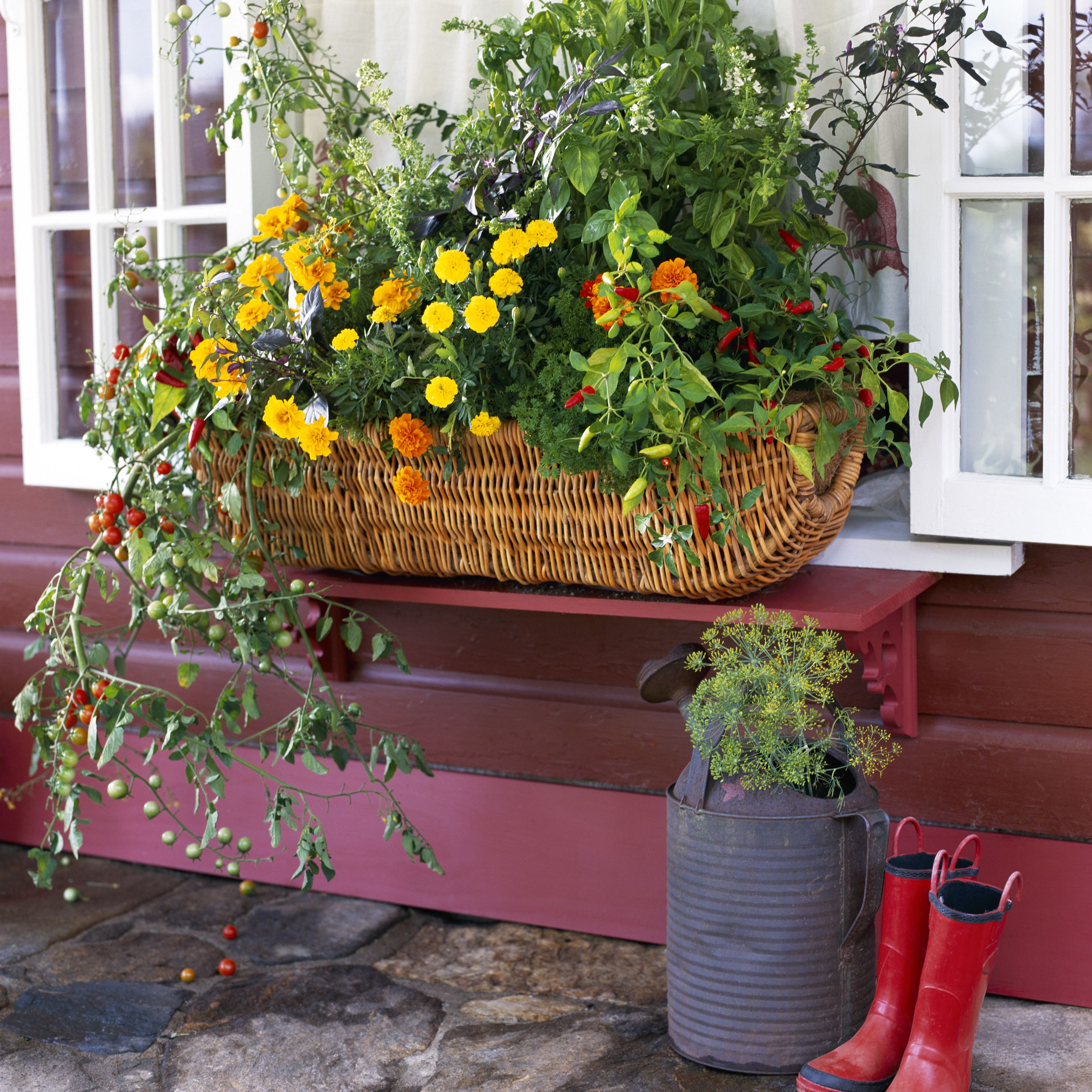 Flowering Vegetable Window Box
