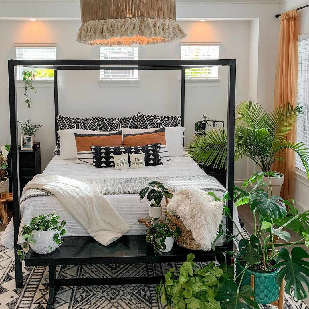 canopy bed plants