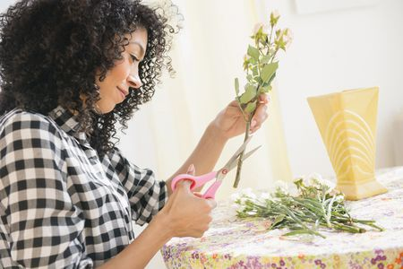 Tips For Cutting And Displaying Roses