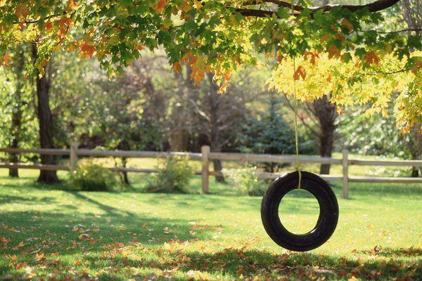 A tire swing outside