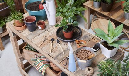 gardening bench with tools and plants