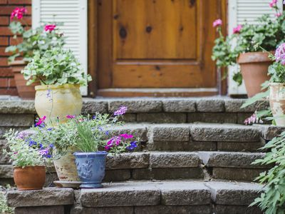 8 Fabulous Plants For Spring Container Gardens