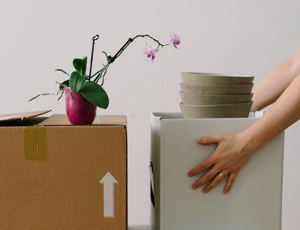 person preparing to move boxes