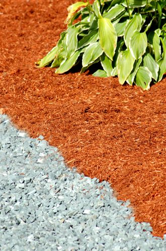 Photo showing the use of contrasting mulch colors.