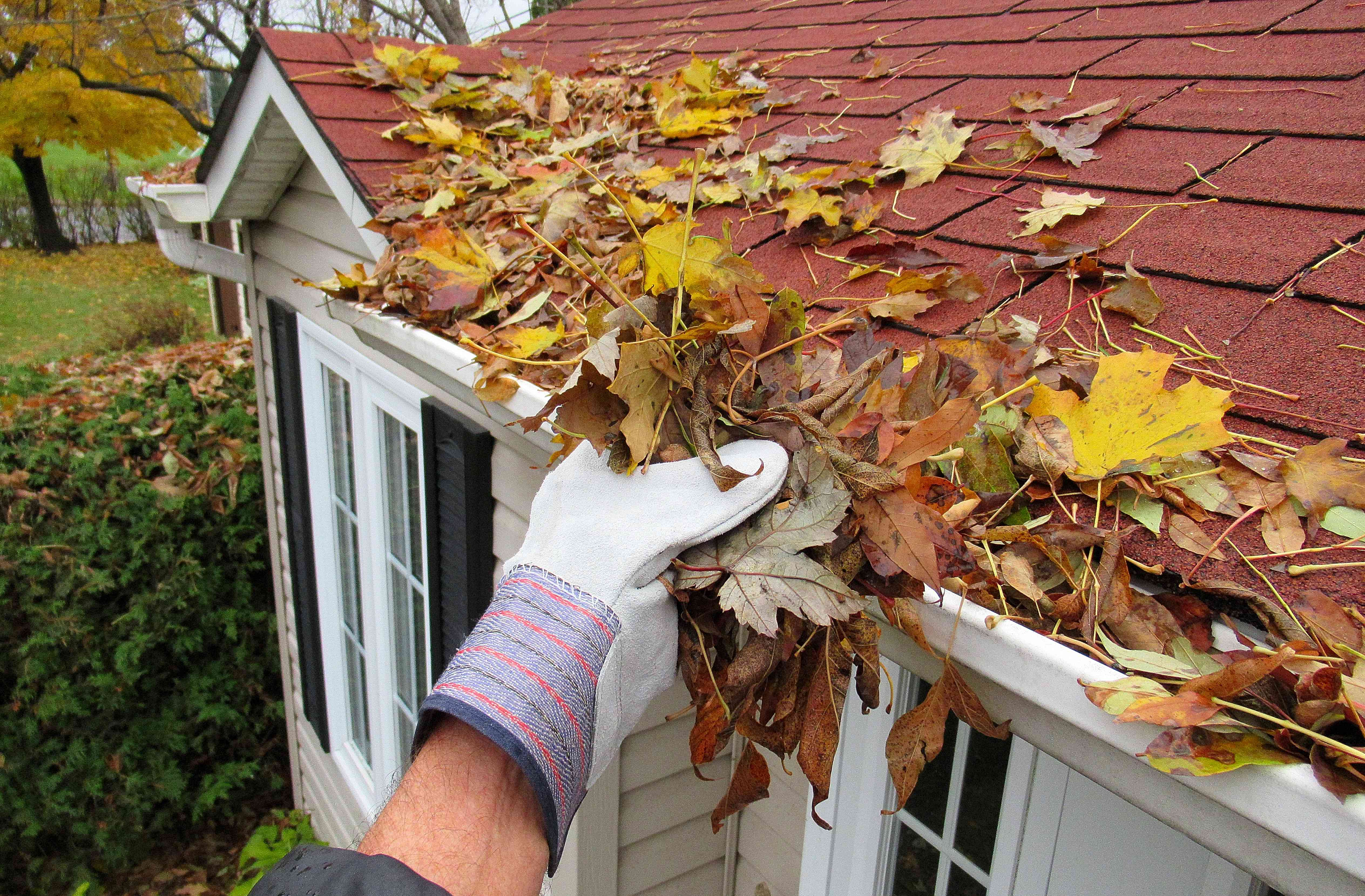 Cleaning Gutters in Autumn