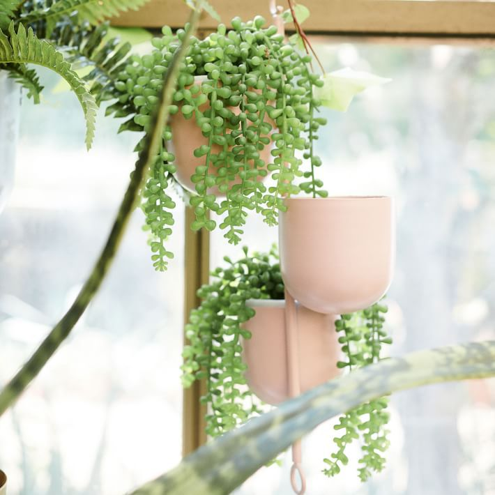 The 10 Best Places To Buy Fake Plants Online In 2020
