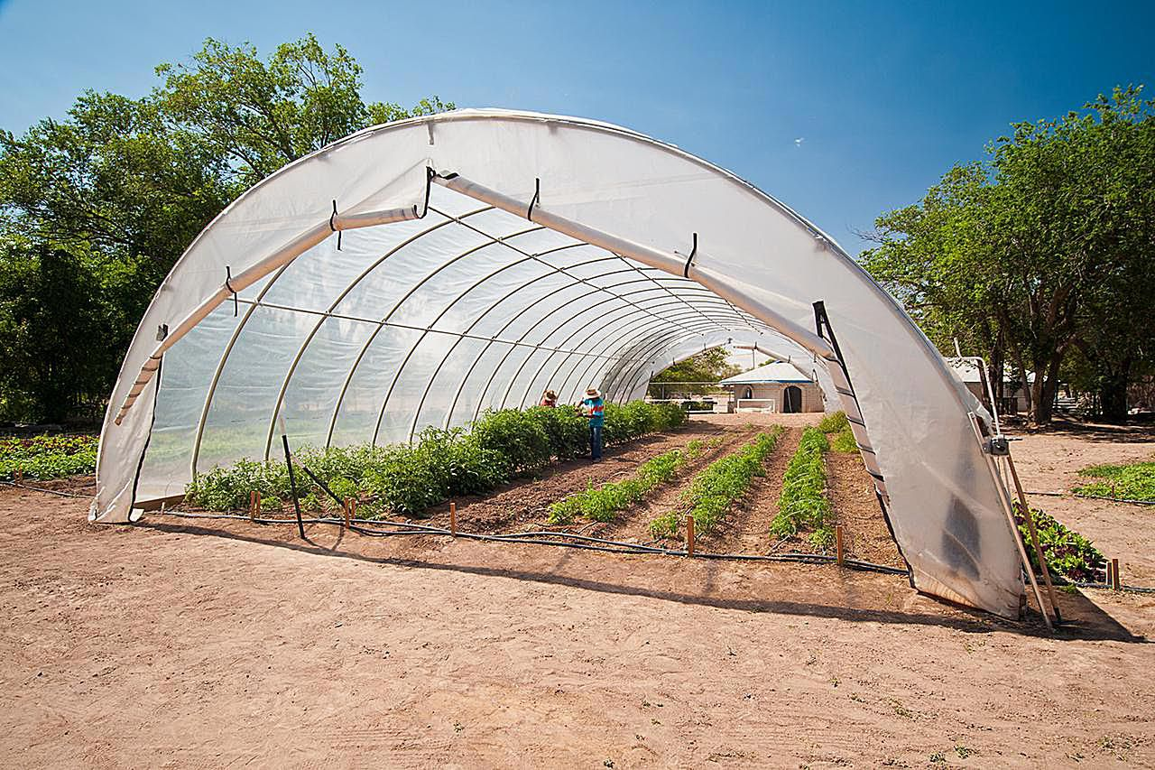 High Tunnels for Your Small Farm