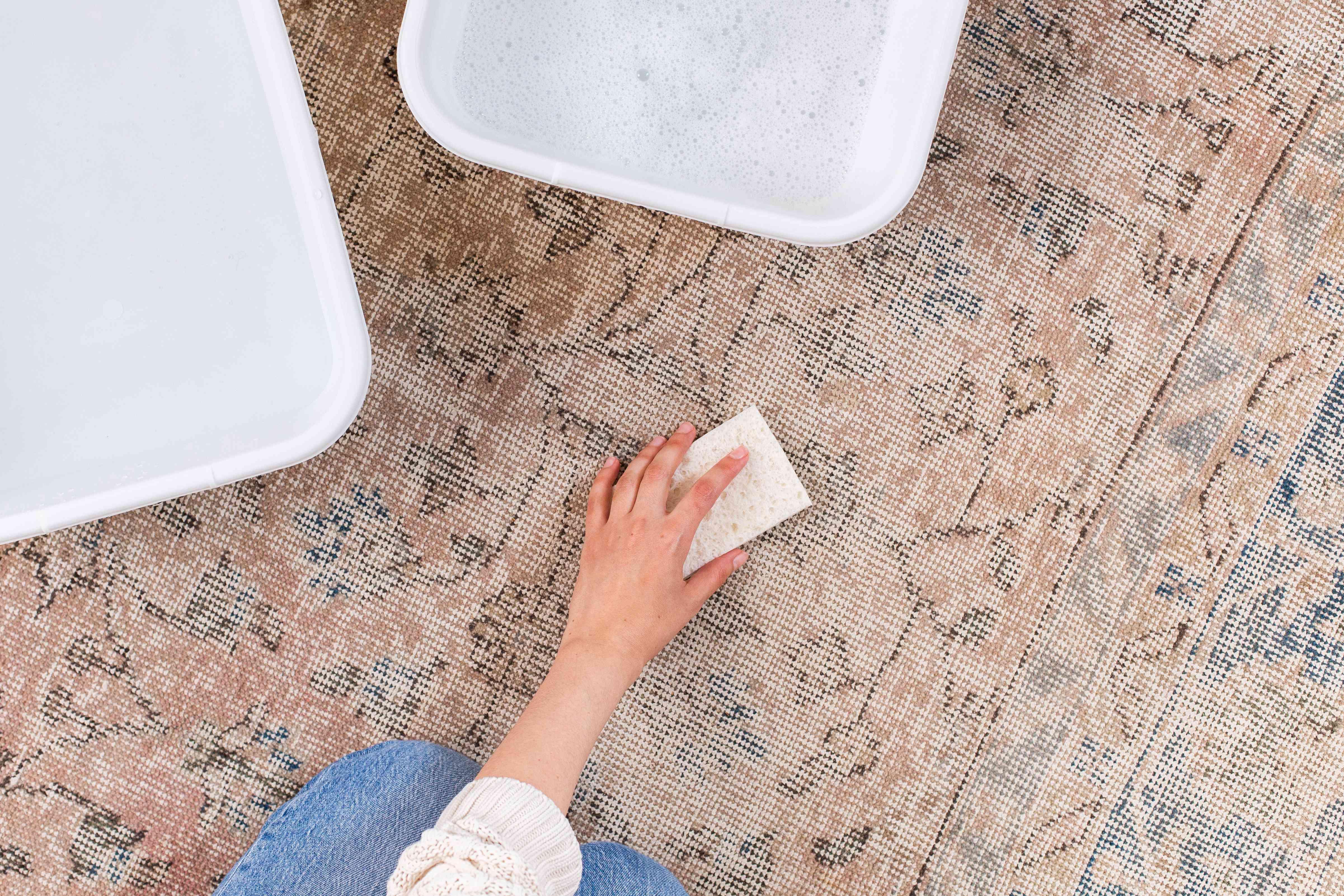 Sponge lightly scrubbing wool rug with wool wash detergent solution