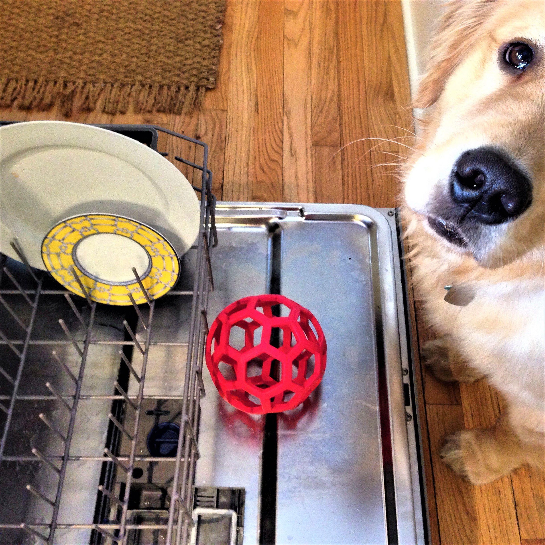 Pet Accessories in Dishwasher