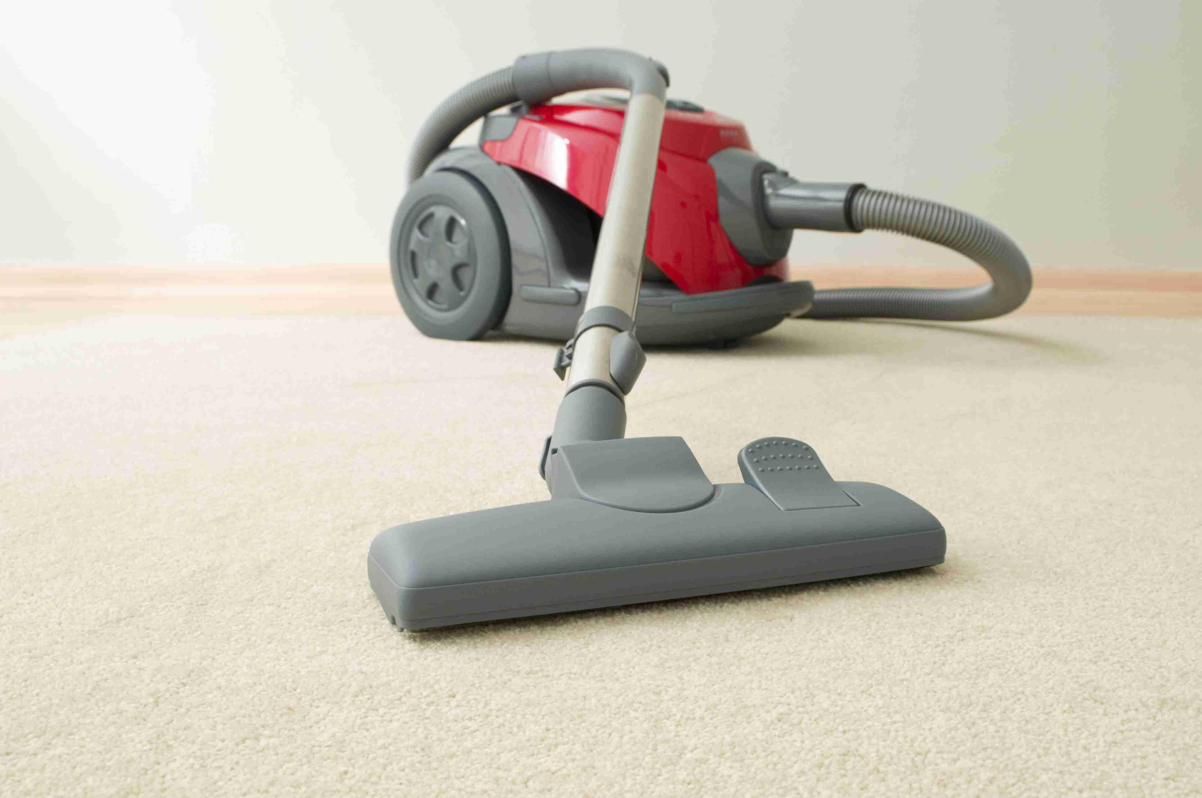 Vacuum cleaner resting on carpet