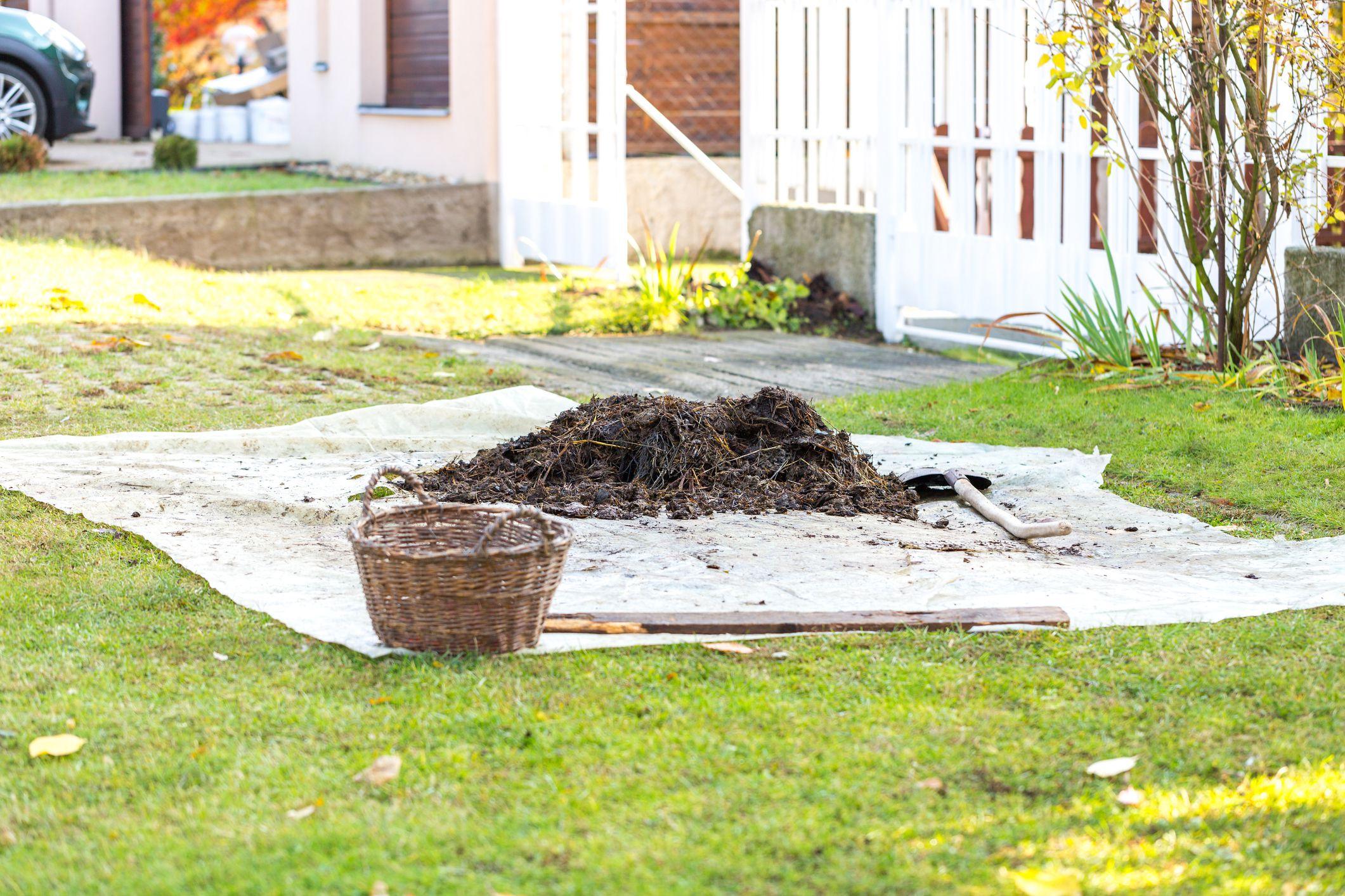 Organic fertilizers fertiliser homemade plants nutrient jpg 2121x1414 Organic fertilizers fertiliser homemade plants nutrient