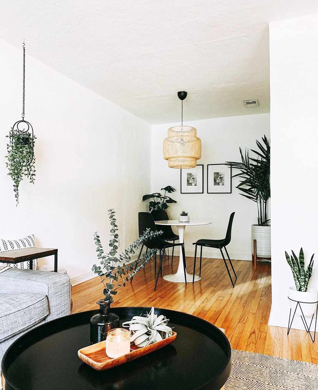 Dining room with lots of greenery