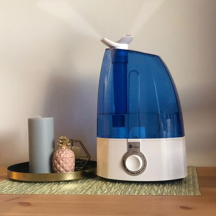 The 10 Best Humidifiers Of 2019