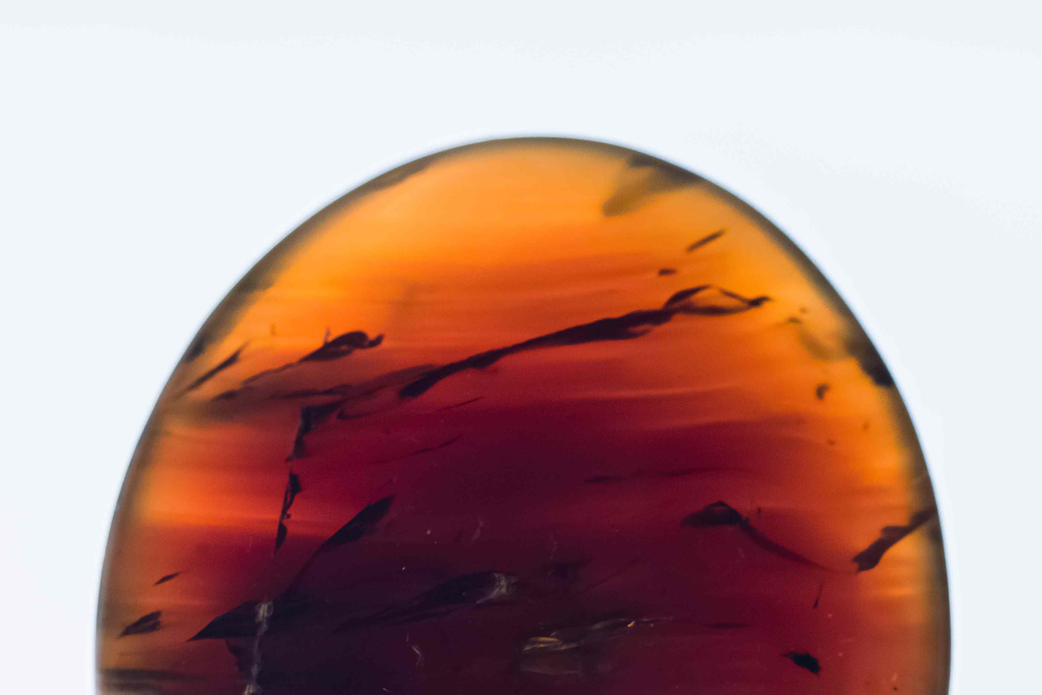 closeup of amber