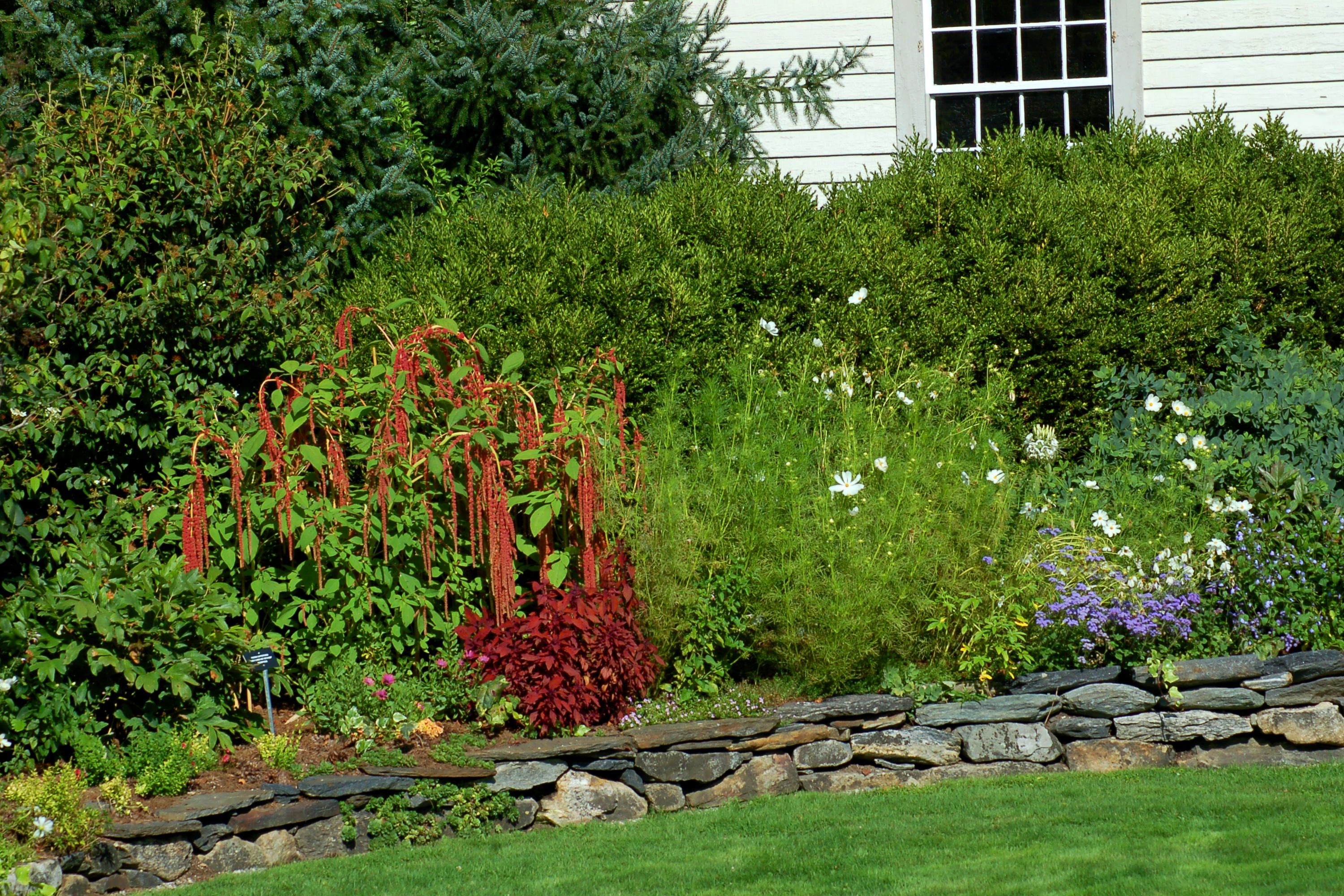 Flower border with different textures of plants