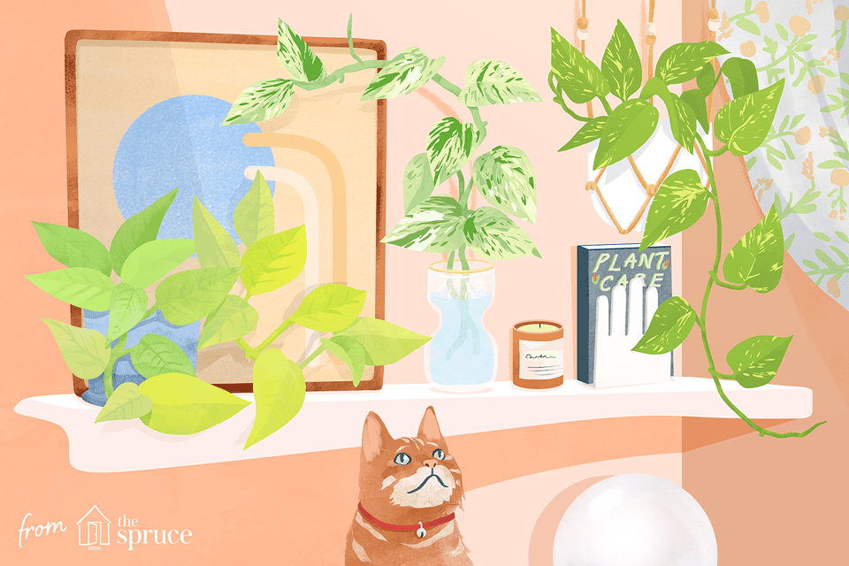 Illustration of cat by plants