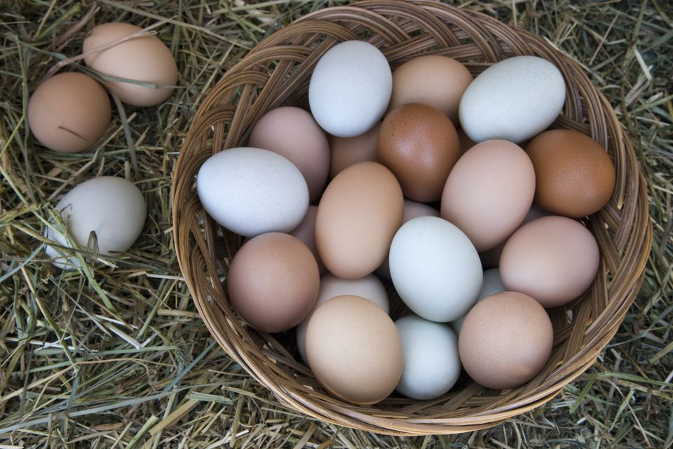 Tips For Freezing And Thawing Eggs