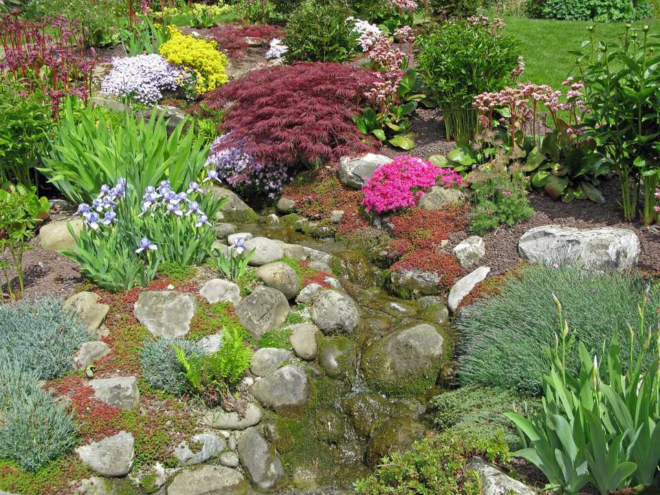 My Land Is Too Rocky Rock Garden Designs