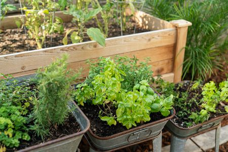 Planning And Planting An Herb Garden, Small Herb Garden Ideas