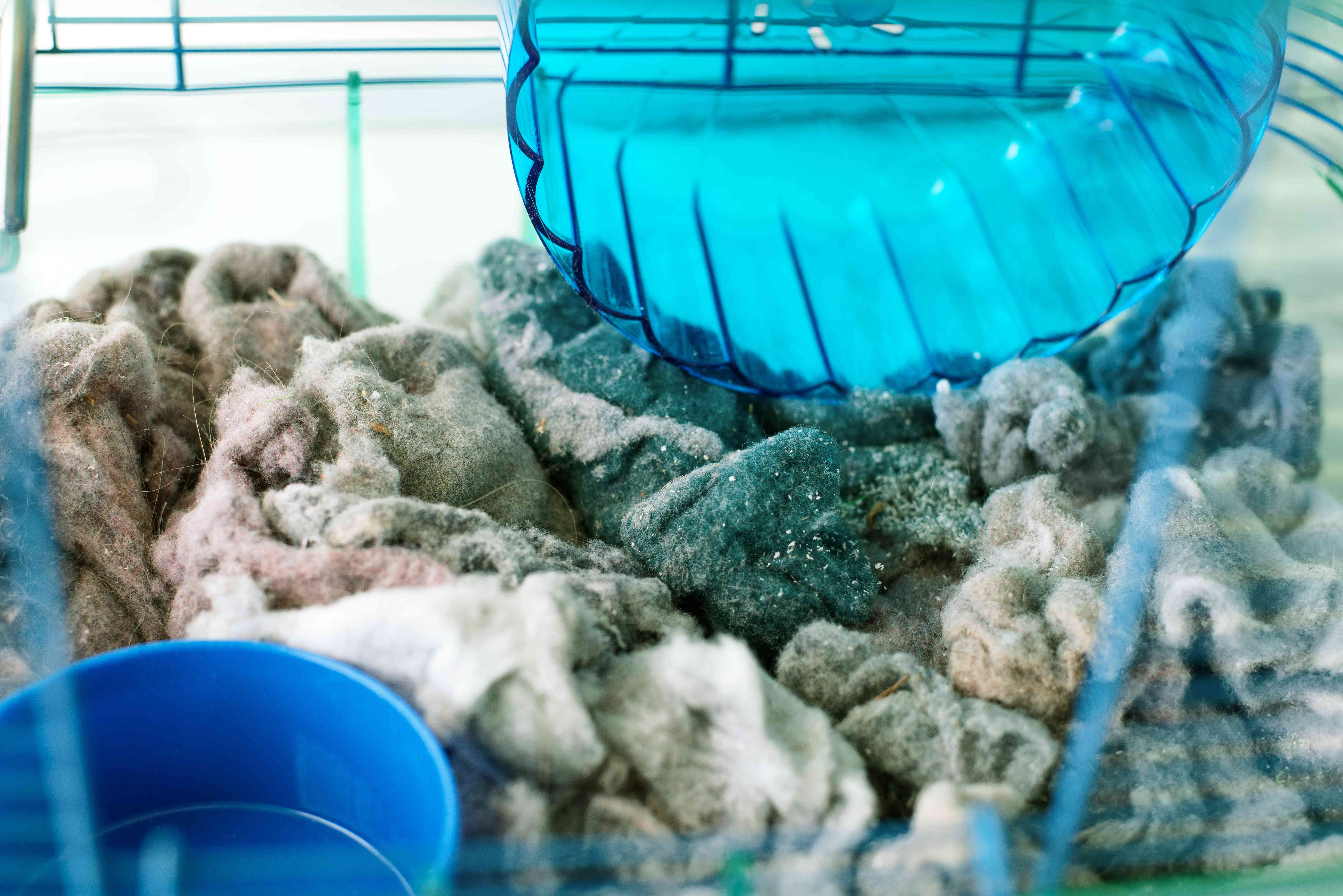 Dryer lint added to bottom of hamster cage as pet bedding
