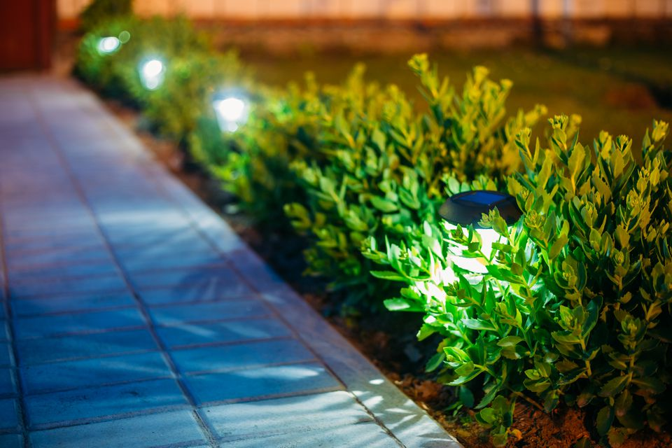Solar lights by a front yard pathway