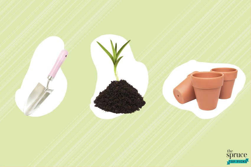 Photo composite of a hand shovel, a bulb plant in dirt, and terracotta pots over a green background.