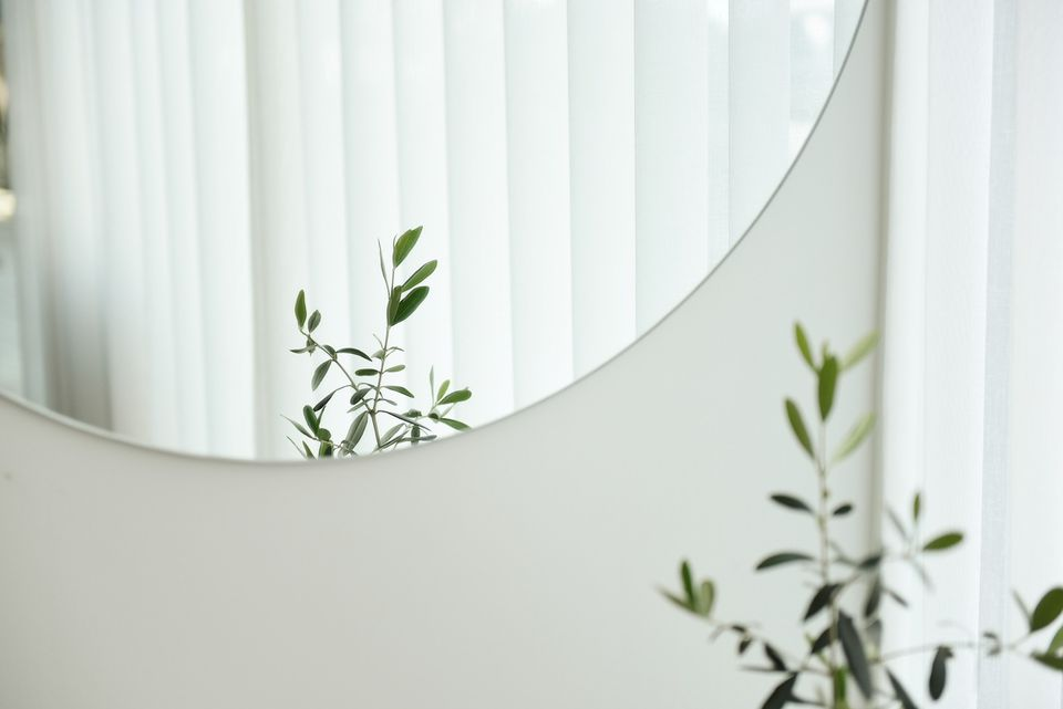 Mirror with plant in it