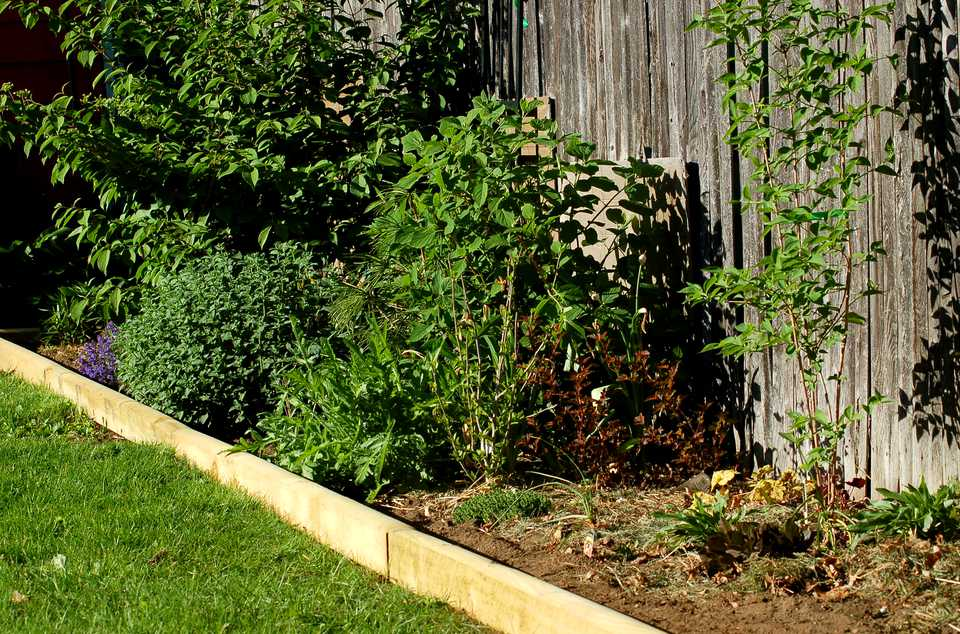 Landscape timber edging (image) gives an ornamental edge. It is easy to install.