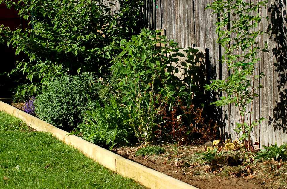 Landscape timber edging