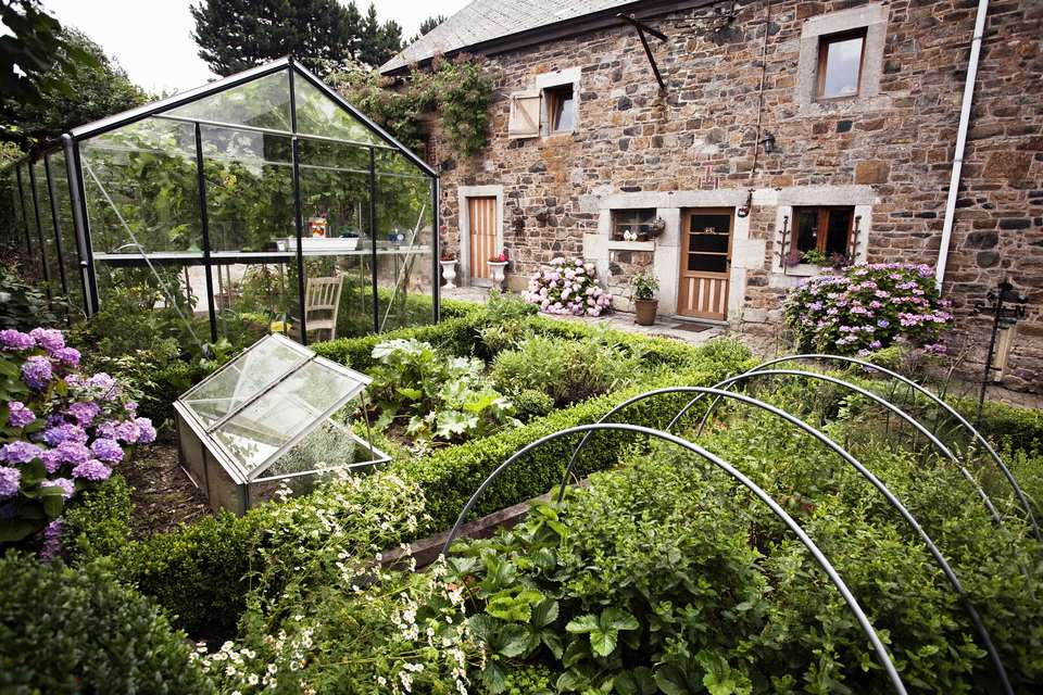 Kitchen garden with greenhouse and box (Buxus) hedging, July