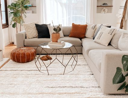 The Spruce Home Area Rug in a Living Room