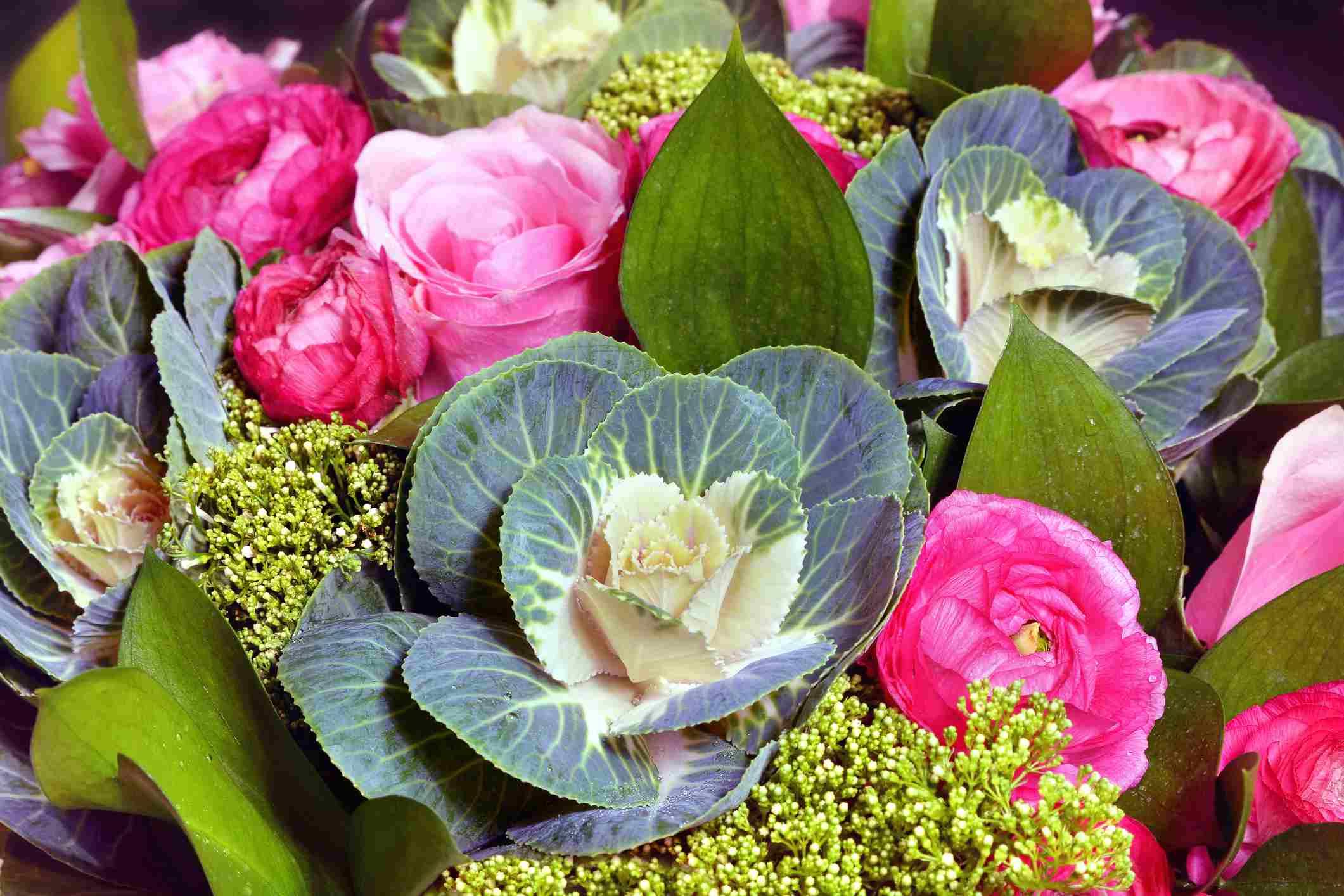 'Condor' cabbage in a flower arrangement